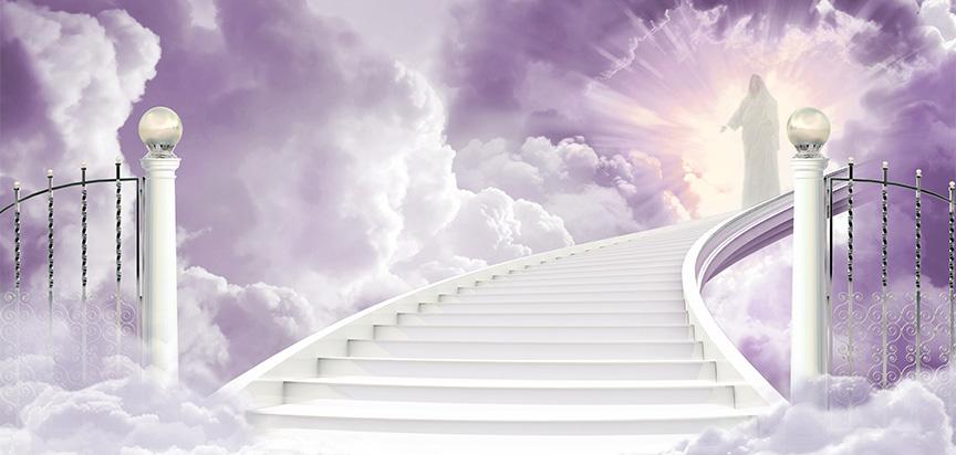 Enter Heaven Lilac SilverGates M.jpg