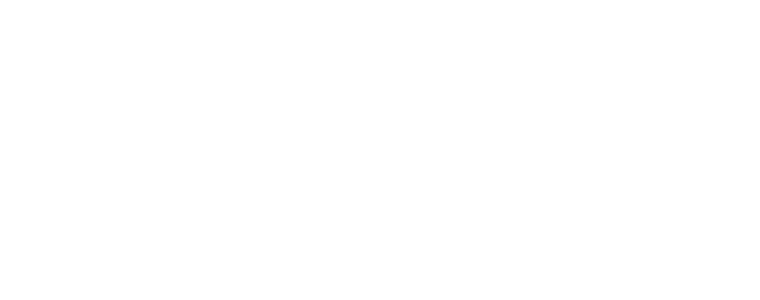 Flying Lion, Inc.