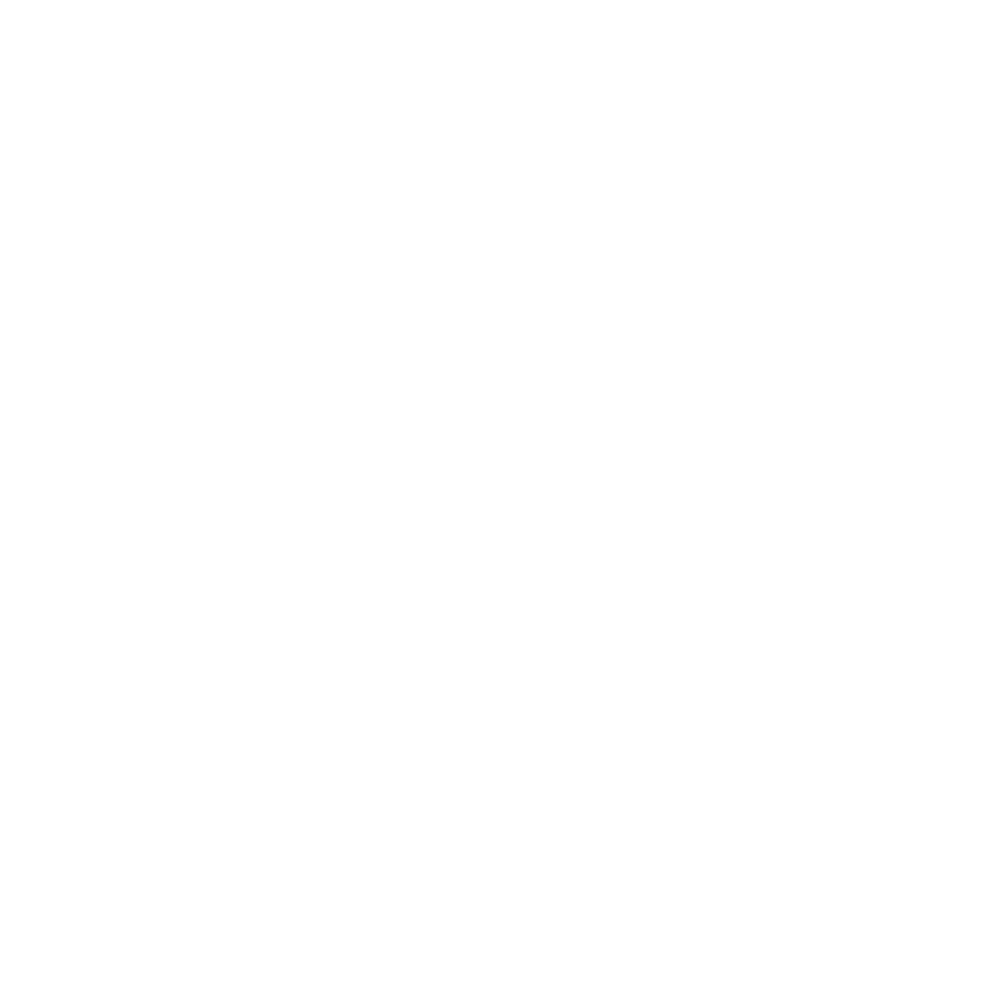 Flight-On-Logo-1024-white.png