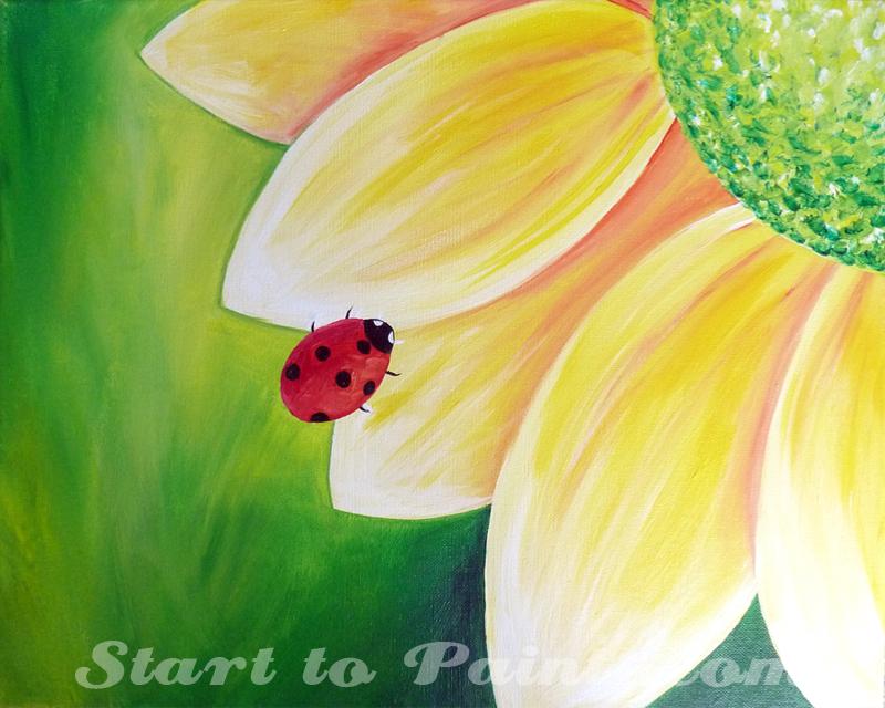 Ladybug on a Flower.jpg