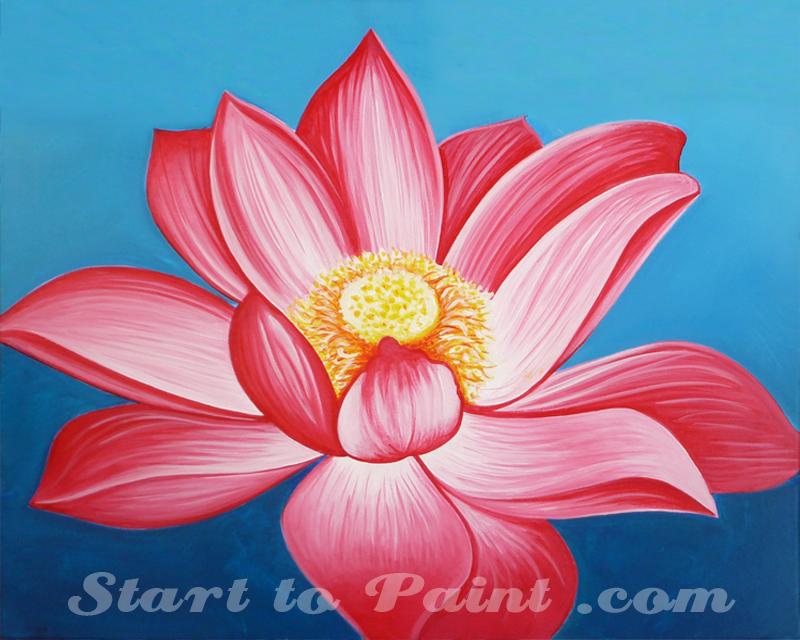 Pink Lotus Flower.jpg