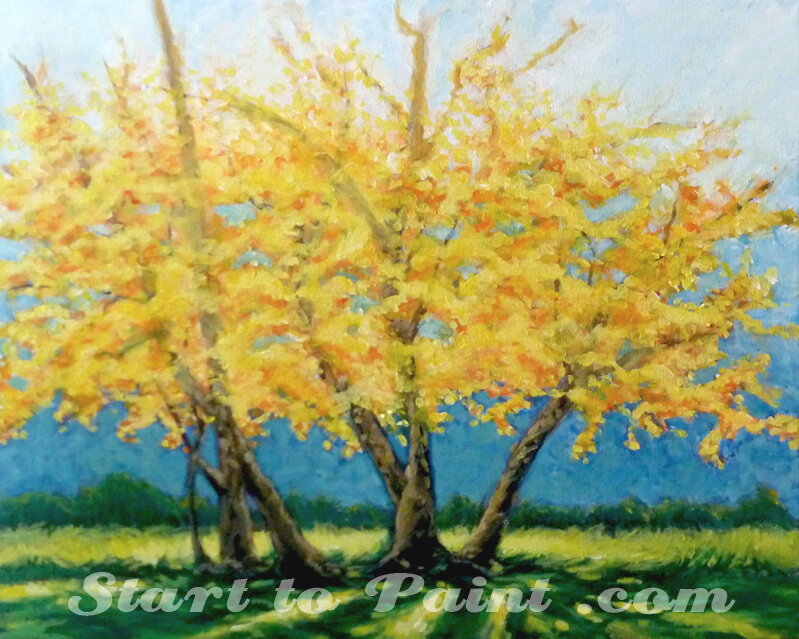Yellow Fall Tree.jpg