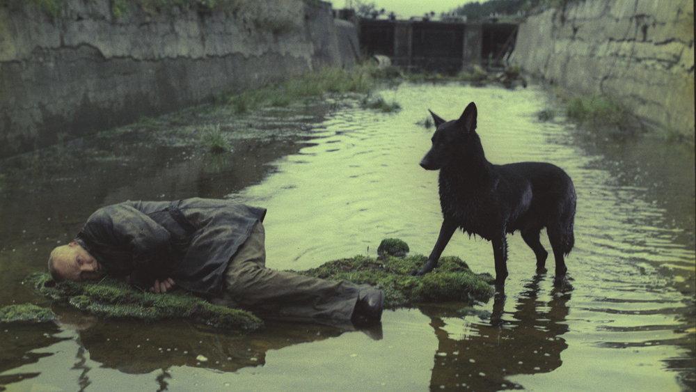 Stalker ,Andrei Tarkovsky (1979)