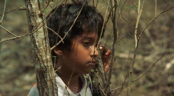 The Forsaken Land , Vimukthi Jayasundara (2005)