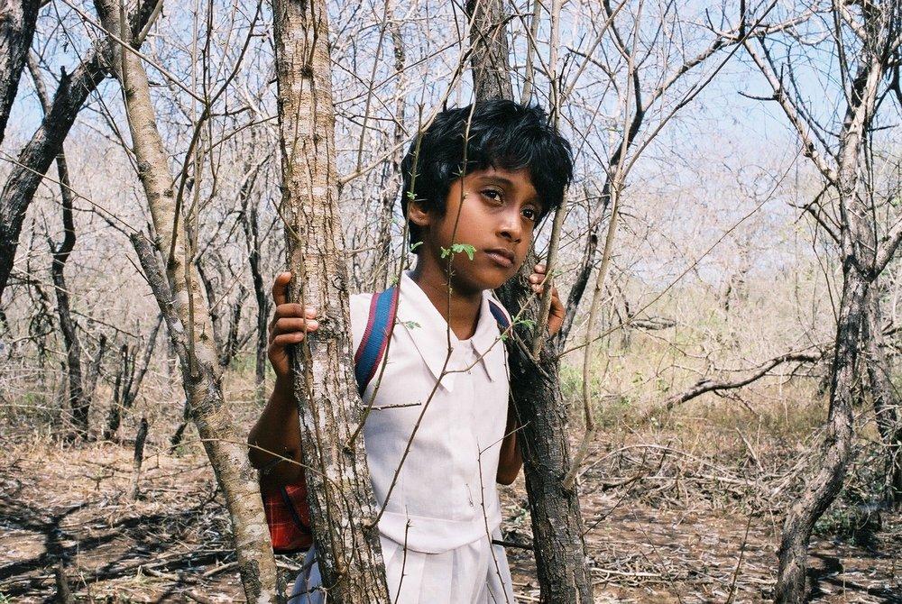 The Forsaken Land ,Vimukthi Jayasundara (2005)