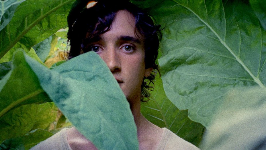 Lazzaro Felice   (Happy as Lazzaro) , Alice Rohrwacher (2018)