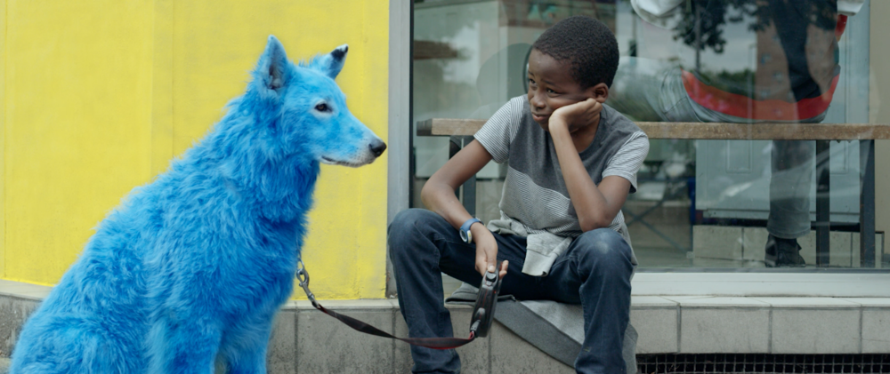 Blue Dog , Fanny Liatard & Jérémy Trouilh (2018)