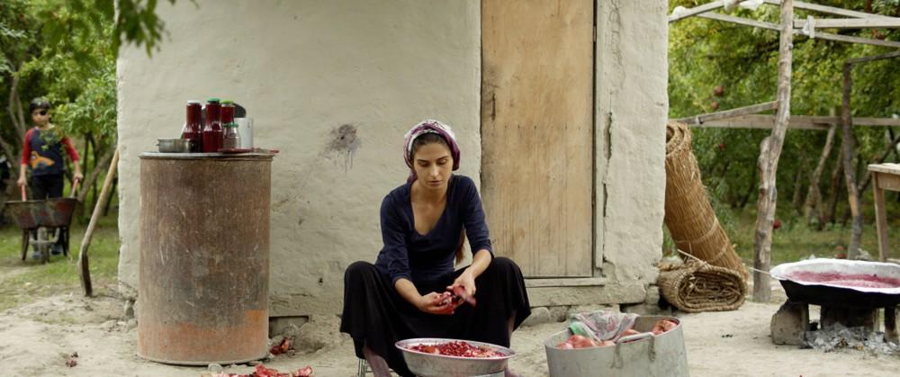 Pomegranate Orchard , Ilgar Najaf (2017)