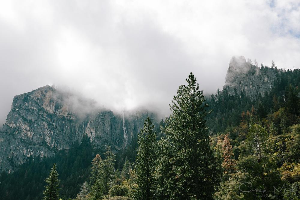 Yosemite April 2016 - Corrie Mick Photography-15.jpg