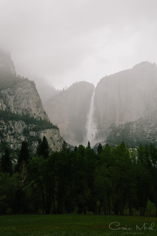 Yosemite April 2016 - Corrie Mick Photography-16.jpg