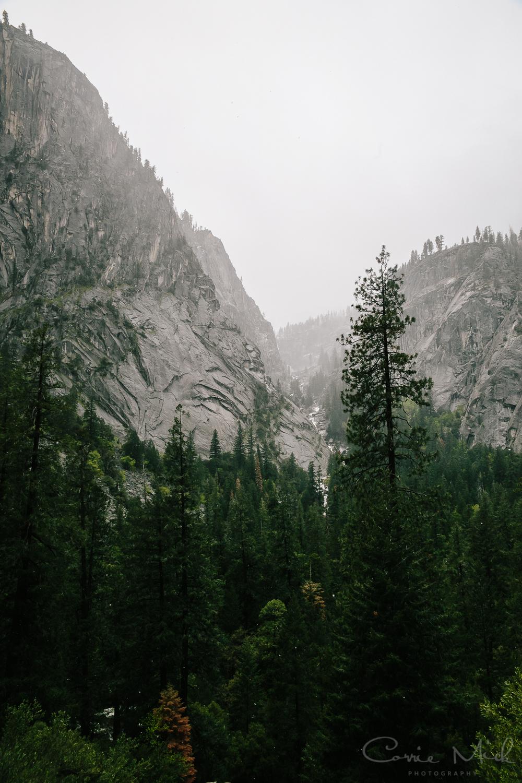 Yosemite April 2016 - Corrie Mick Photography-17.jpg