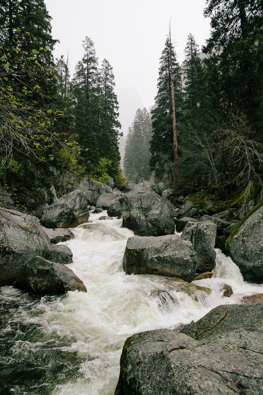 Yosemite April 2016 - Corrie Mick Photography-24.jpg