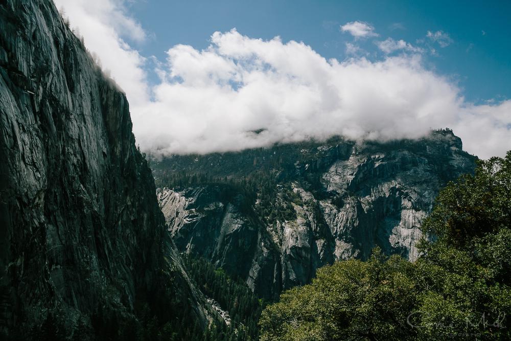Yosemite April 2016 - Corrie Mick Photography-39.jpg