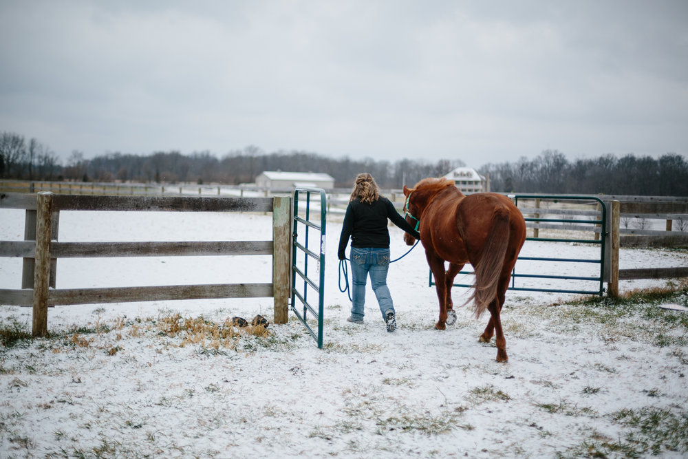 Jess & Shea at the Horse Barn in the Snow - Corrie Mick Photography-30.jpg