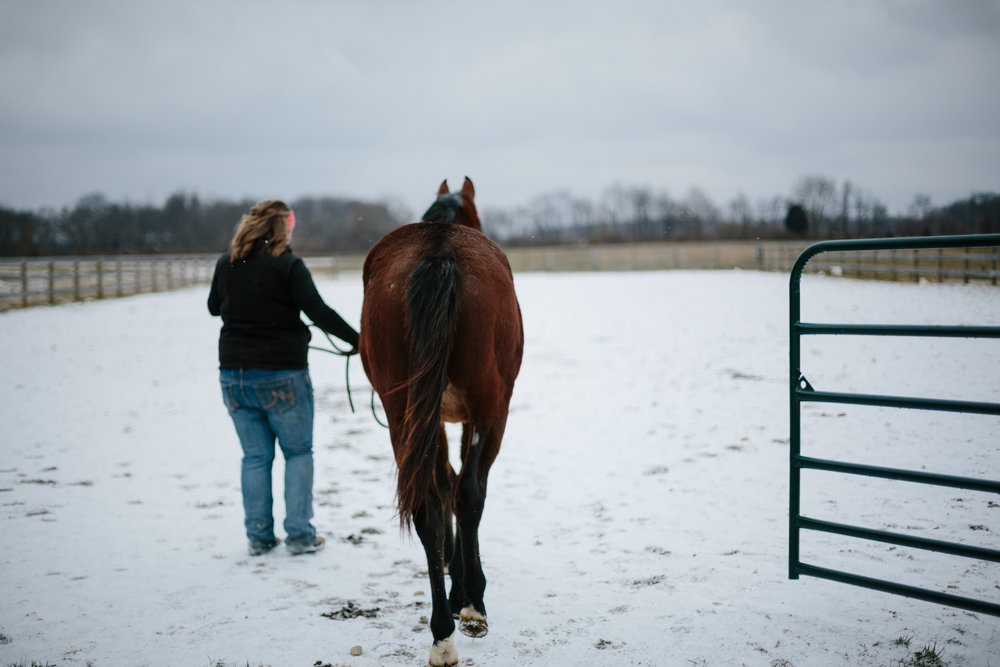 Jess & Shea at the Horse Barn in the Snow - Corrie Mick Photography-44.jpg