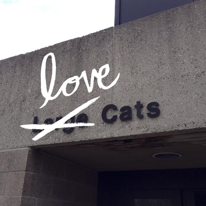 keenan–lovecats.jpg