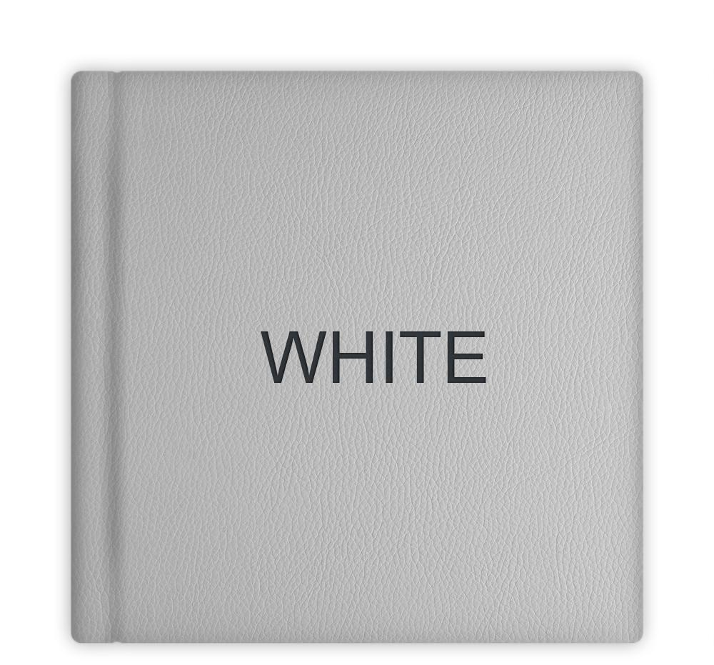 leatherette_24_white.jpg