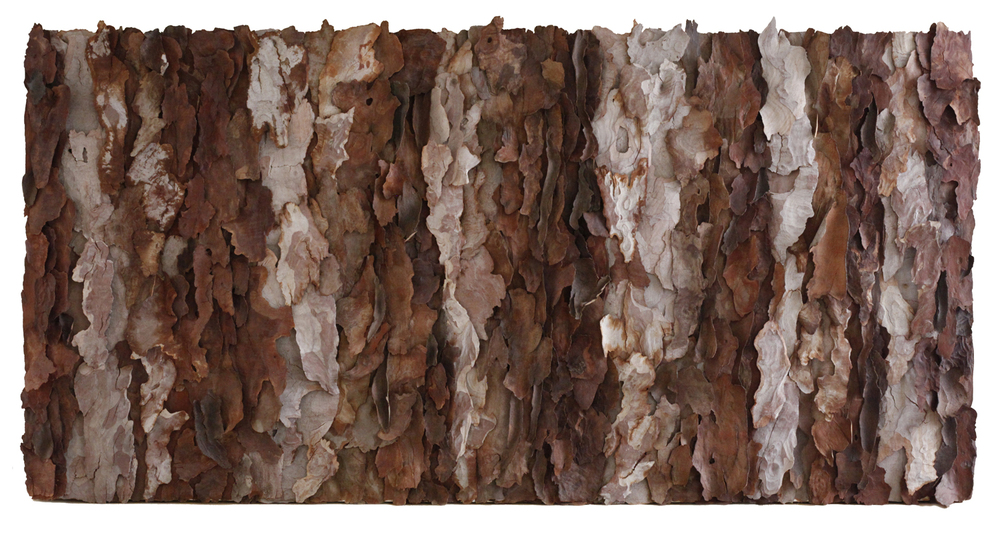 "Grande Monte Mar ll   tree bark on canvas 72"" x 36"""