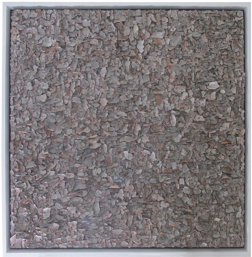 "Impasto #2    tree bark on canvas   48"" x 48"""