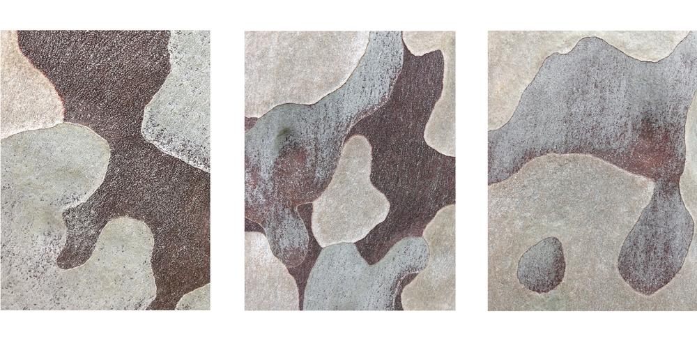 """Triptych #1 eucalyptus bark 3 - 16"""" x 20"""" prints"""