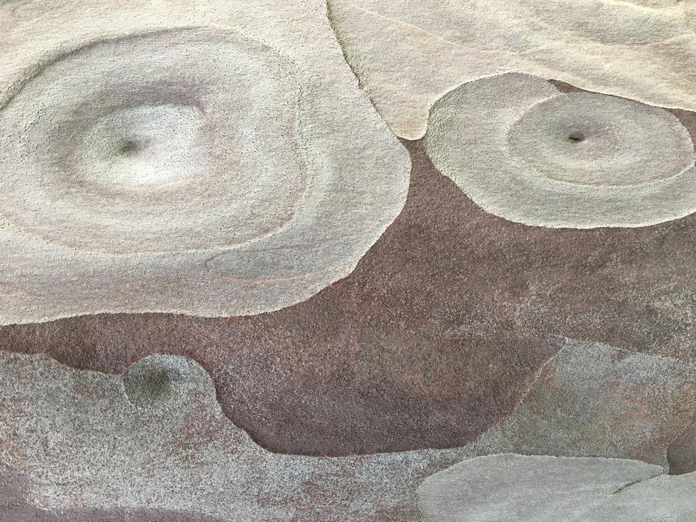 """#6566 eucalyptus bark 33"""" x 26"""" and 20"""" x 16"""""""