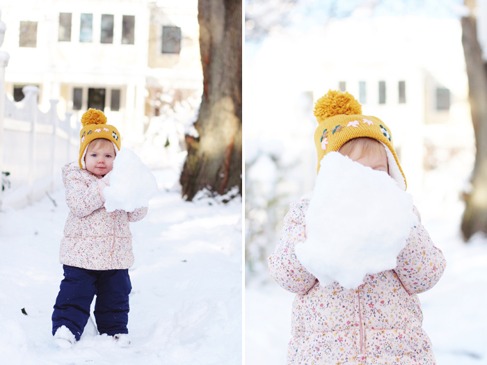 snowbird5.jpg
