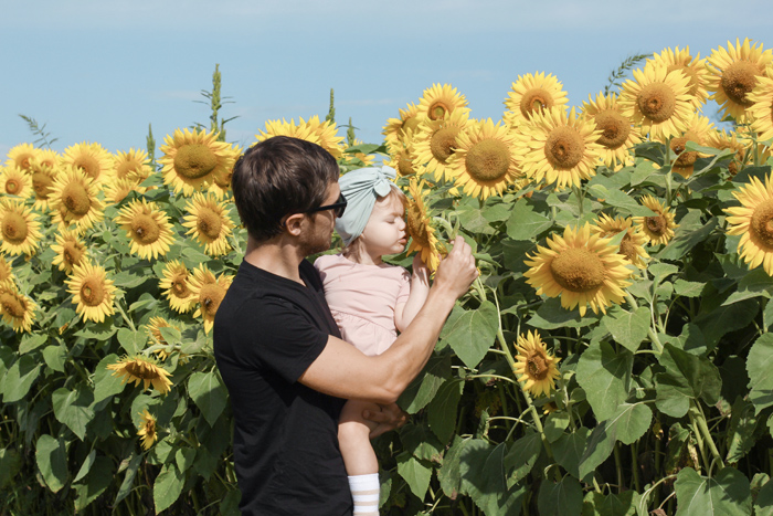 2018sunflowers4.jpg