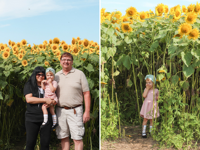 2018sunflowers10.jpg