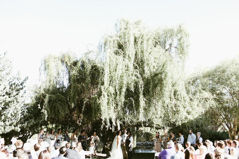Gay wedding in Idaho