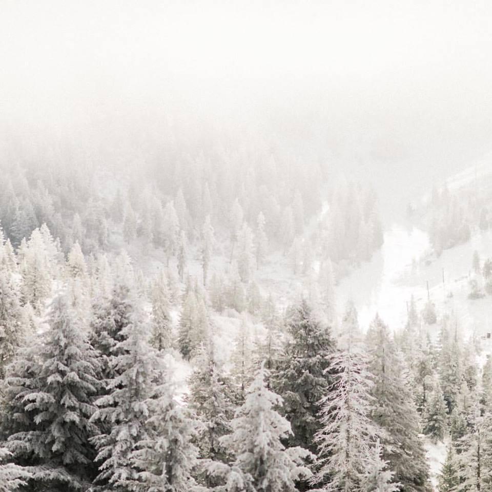 Idaho Mountain Snow