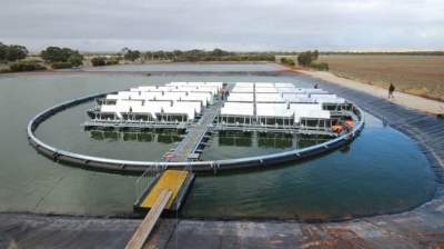Jamestown floating solar plant. Image: Infratech