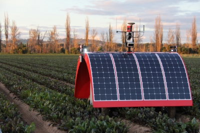The University of Sydney's solar-powered Ladybird robot on a beetroot farm in Cowra, NSW.