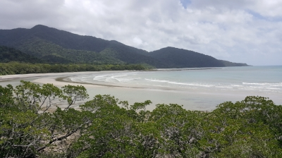 Cape Tribulation, where the rainforest and reef meet. Image Credit: Pennie Stoyles