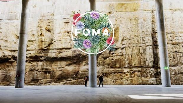 FOMA Exhibit.jpg