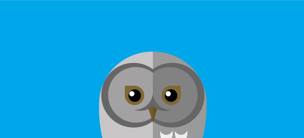 Snowey-Owl.jpg
