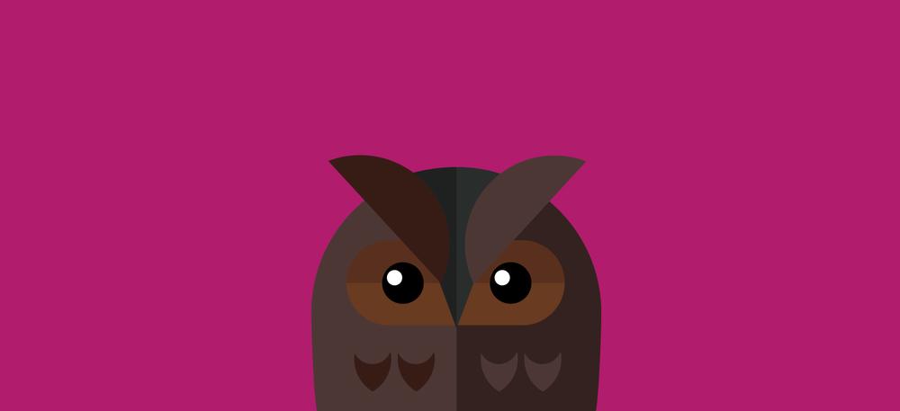 Sassy_Owl.jpg