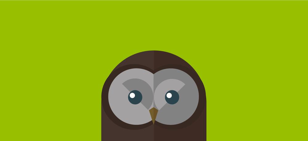 Norman_-Owl.jpg