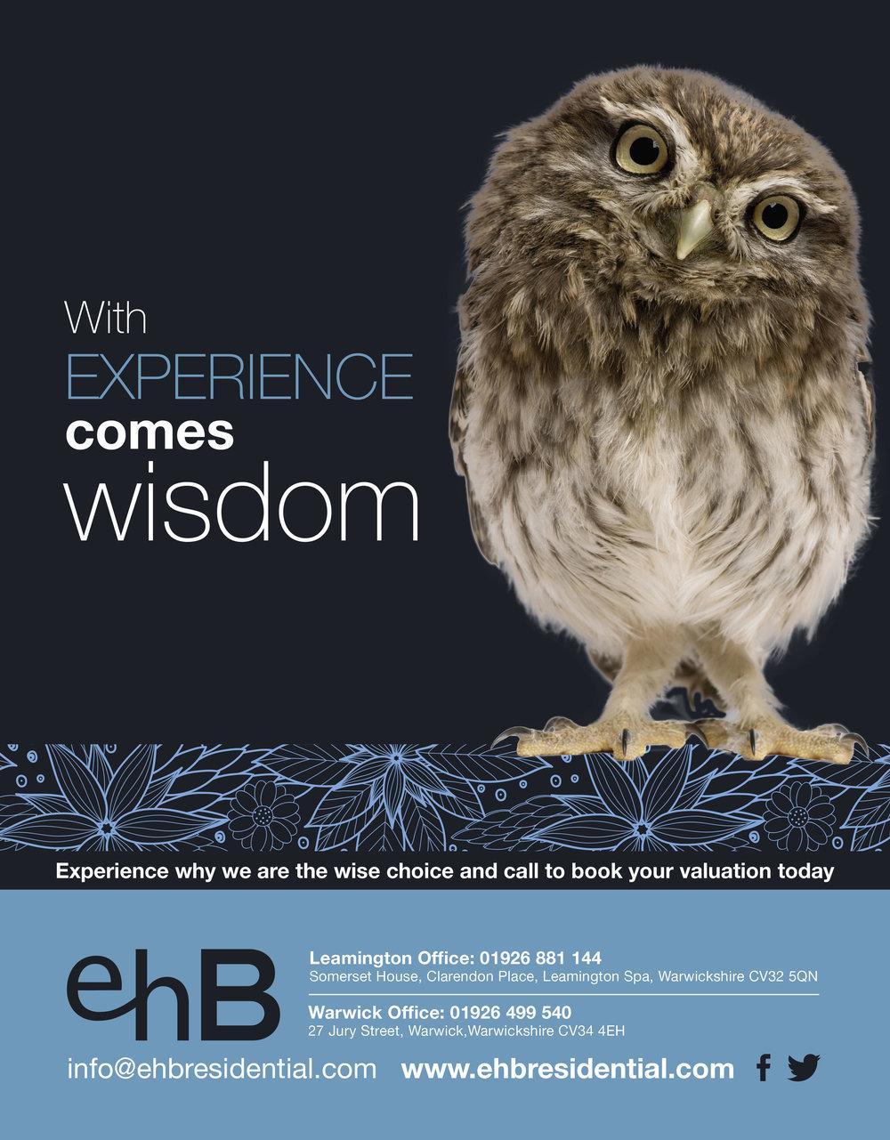 ehb-owl.jpg