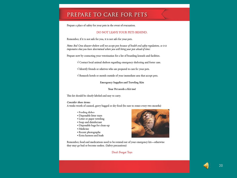 Prepare to CARE -Personal Preparedness_Page_20.png