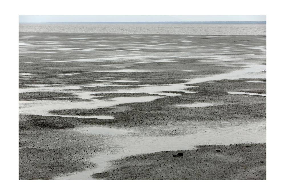 Kincaid Beach. Anchorage, Alaska.