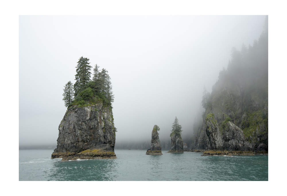 Chiswell Islands. Kenai Fjords National Park, Alaska.