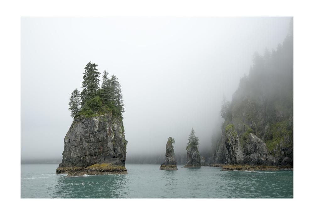 Chiswell Islands. Kenai Fjords National Park, Alaska.