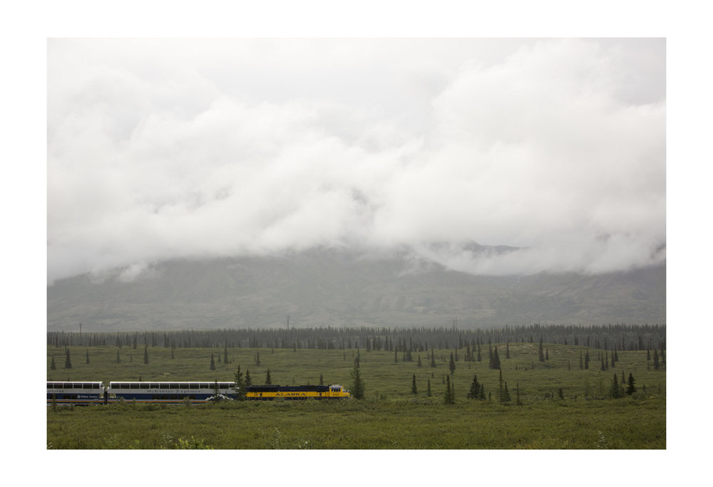 View from the road near Talkeetna, Alaska.