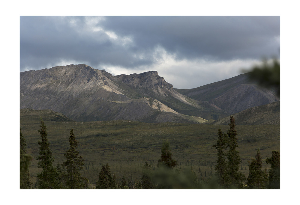 View from the Park Road. Denali National Park, Alaska.