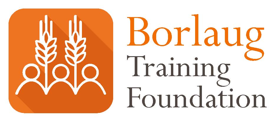 Borlaug Training Foundation