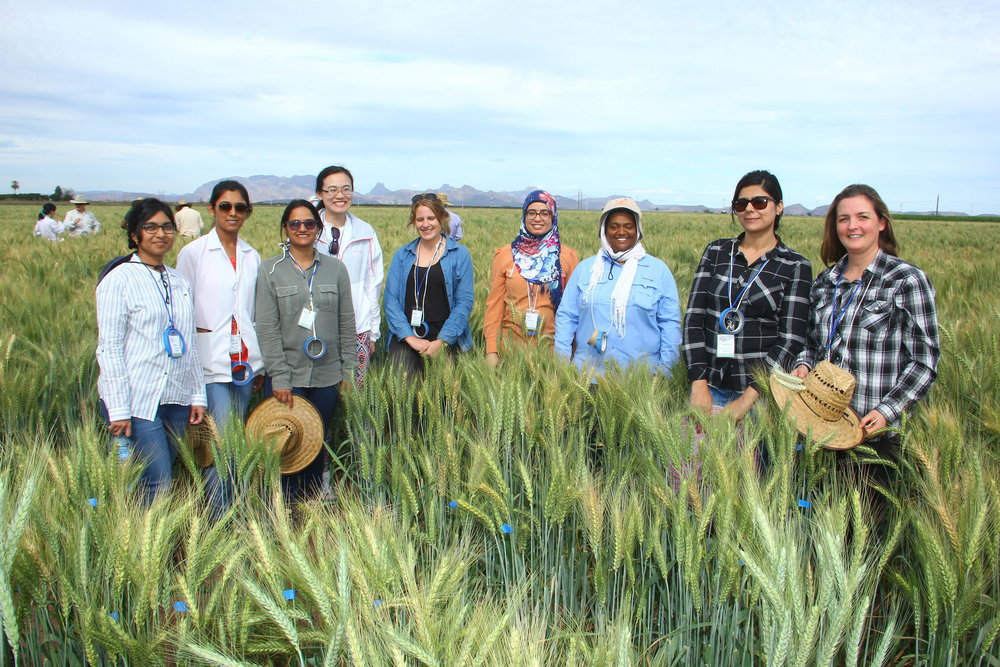 Scientists in training - Becoming a good scientist who can make impacts internationally requires more than just classroom and lab training. We need to get our hands dirty, go out into the field, and talk to farmers.