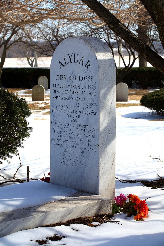 IMG_2957 - Alydar's Grave.jpg