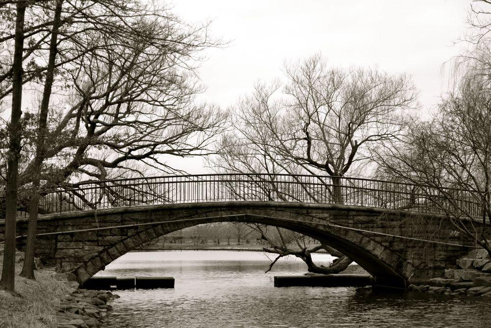 Bridge in Boston.jpg