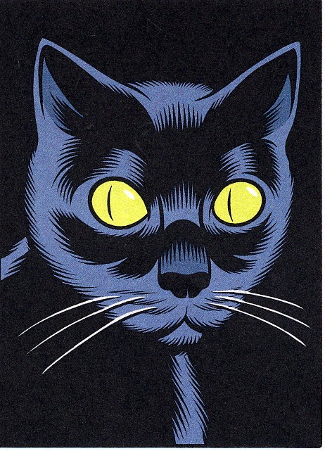 A cat by Charles Burns