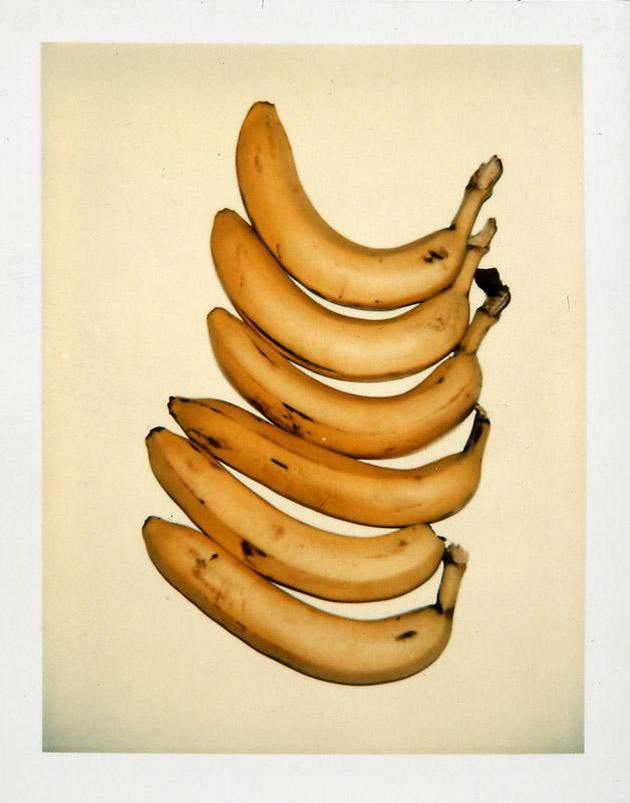 Still Life Polaroid by Andy Warhol